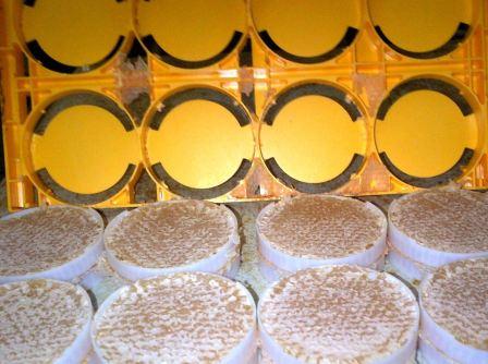 honeycombpacking