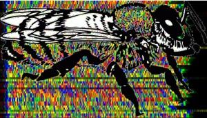 honeybee dna