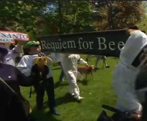 bees funeral
