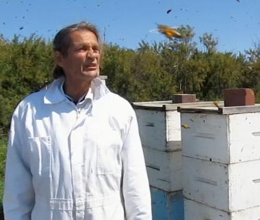 beekeeper jacques alberta canada honey bees pollen