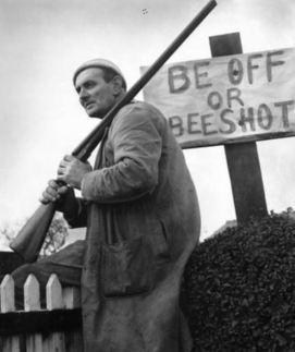 bee off