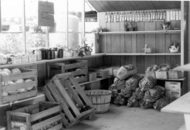 Sales room on the family farm. You should be able to see the dark jars of goldenrod honey, and to the left, a crate of freshly pruned cabbages.