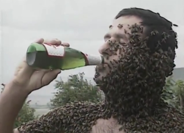 Bees and Beer (Source