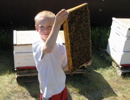 kid beekeeper 2