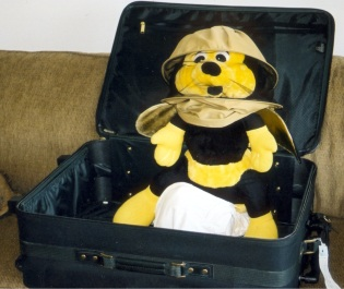 Benny suitcase standing up