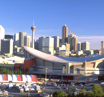 "Calgary, soon to be renamed ""Bee Town"""