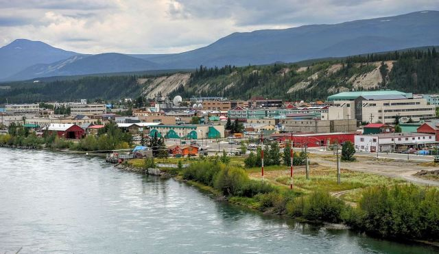 Whitehorse, Yukon's capital and home to a few bees.