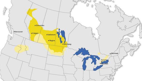 Canada's canola district.