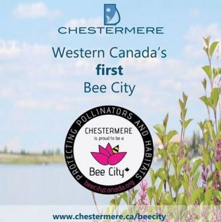 chestermere bee city