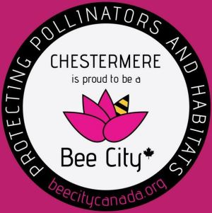 chestermere offical site