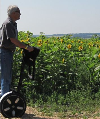 sunflowers and segway