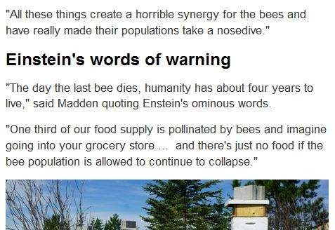CBC Einstein quote