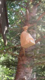 decoy-wasp-nest