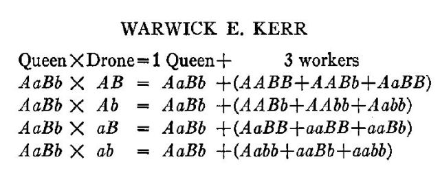 kerrs-q-v-w-freq-from-genetics