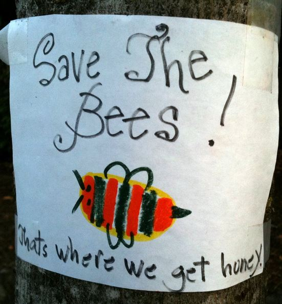 Save the Bees: It's where we get our honey. And money.
