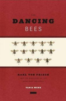 dancing-bees-munz