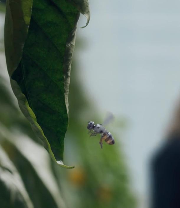 robo-bees-3
