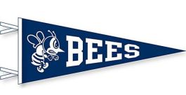 st-ambrose-us-fighting-bees