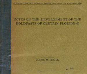 derick-book-cover