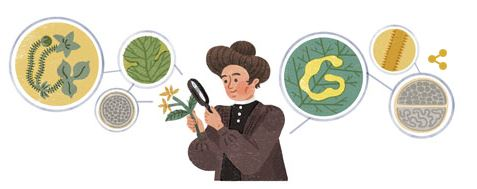 Google.ca Search Image for January 14, 2017 - geneticist/botanist Carrie Derick
