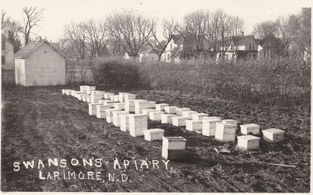 North Dakota Apiary, 1910