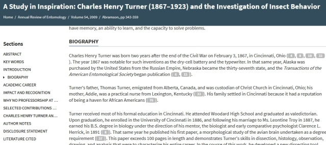 Turner bio background