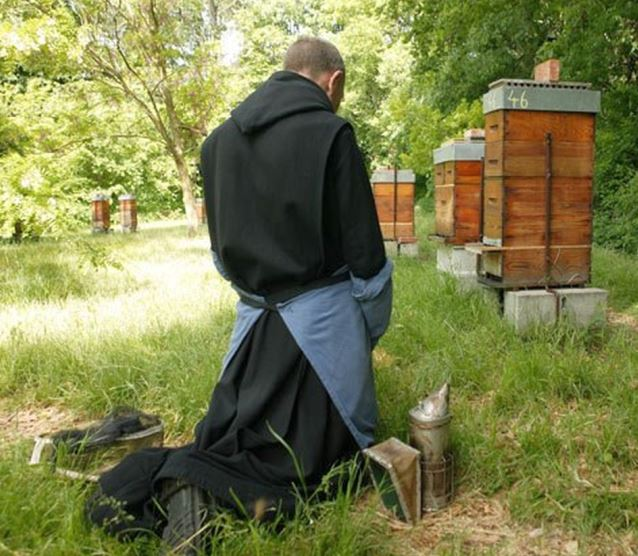 Monk prays for his bees